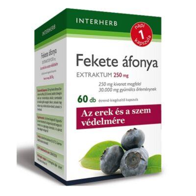 Napi1 FEKETE ÁFONYA Extraktum kapszula 250 mg 60 db